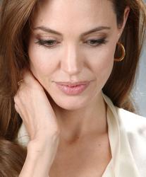 http://img281.imagevenue.com/loc361/th_389933225_tduid300217_angelinajolie_lbh3_122_361lo.jpg